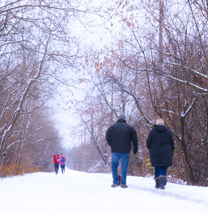 Brantford trails in winter