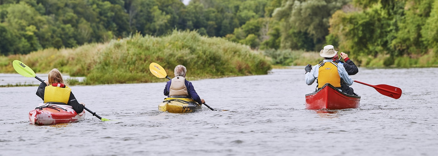 Paddlers on Grand River